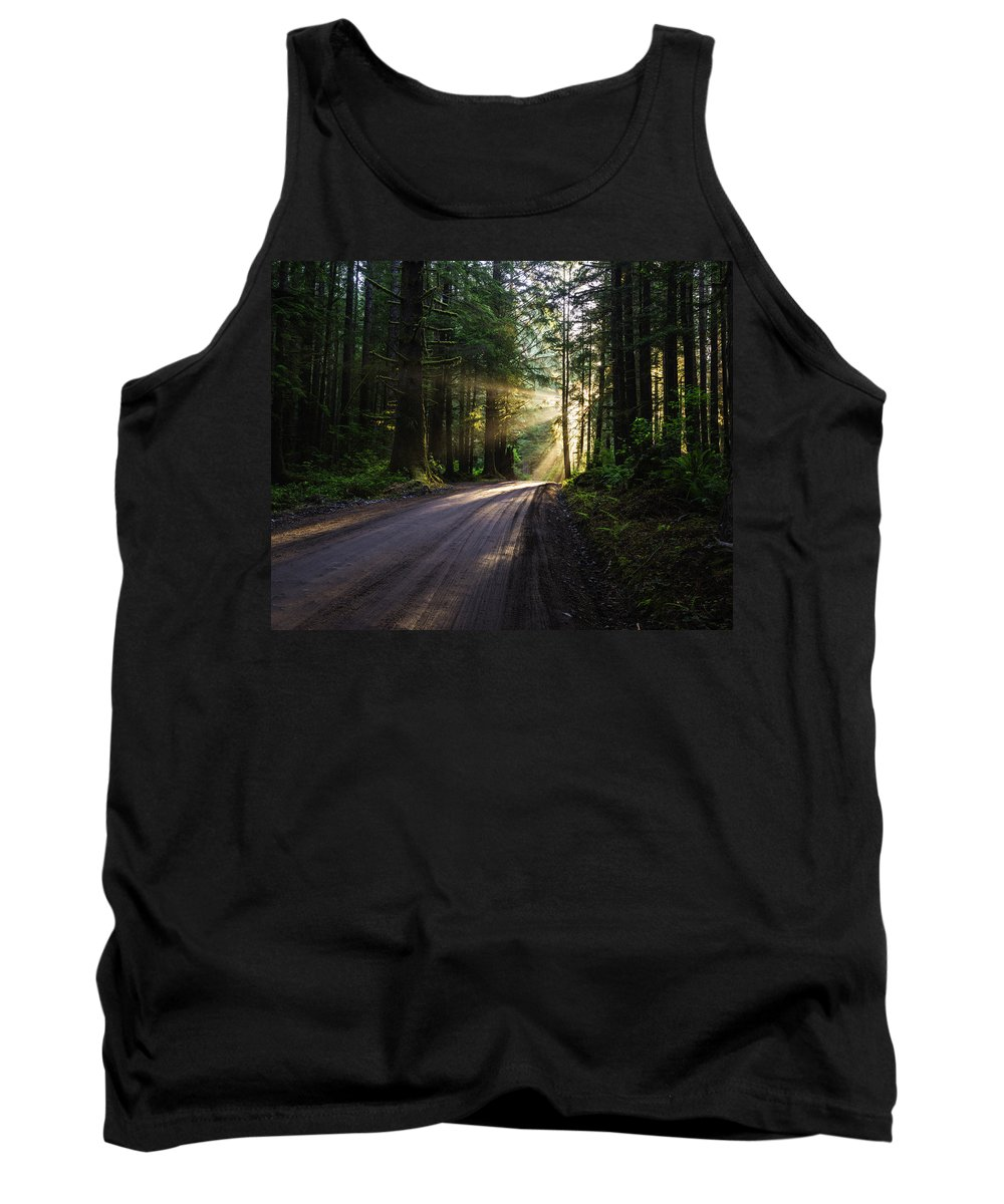 God Rays Tank Top featuring the photograph Redwood National Park Morning by Vishwanath Bhat