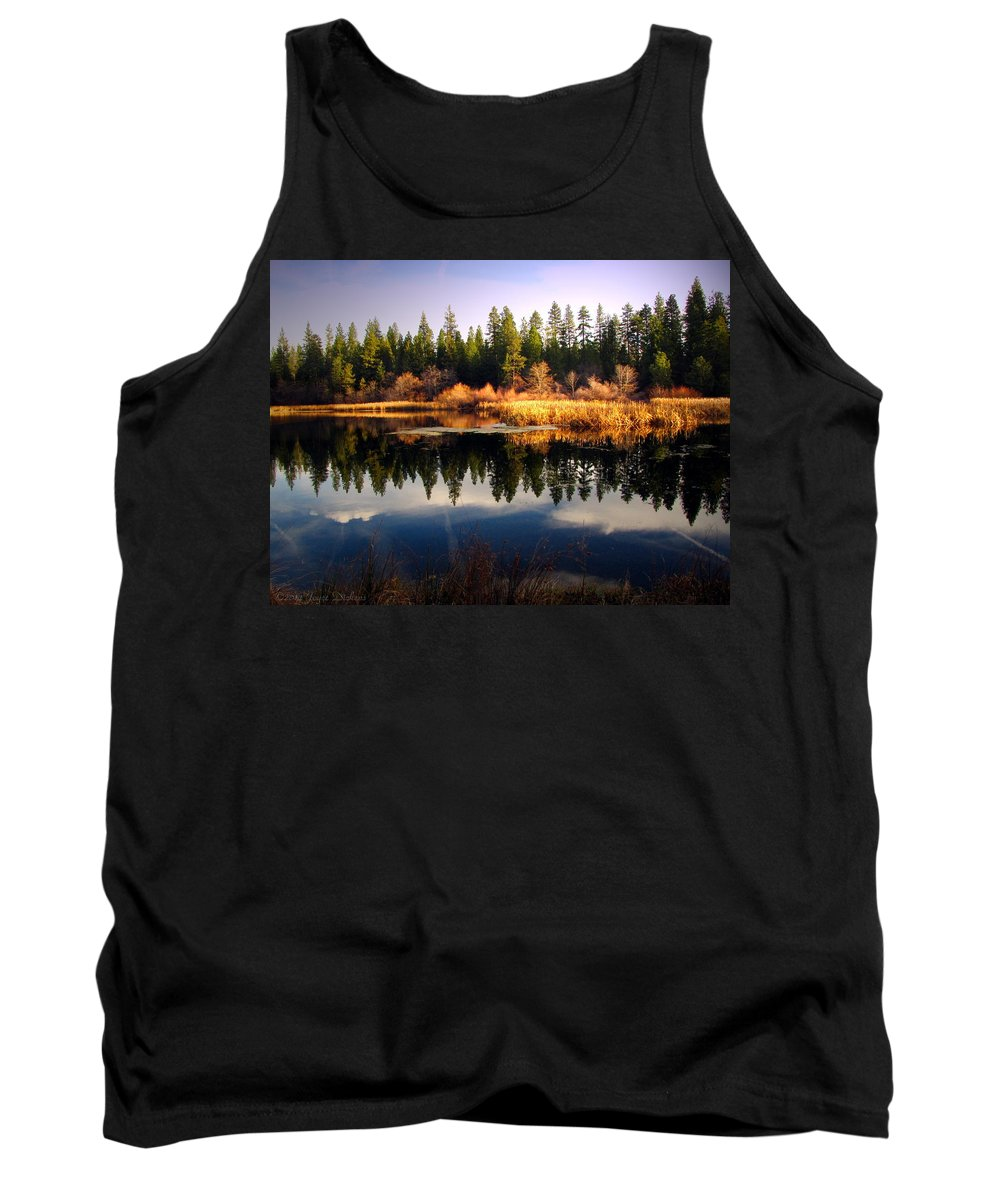 Lake Tank Top featuring the photograph Reflections At Grace Lake by Joyce Dickens