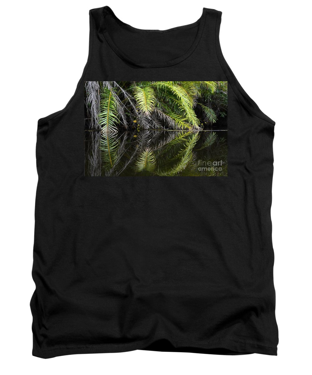 Beauty Beauty Of Reflections Tank Top featuring the photograph Reflections Marimbus River Brazil 2 by Bob Christopher