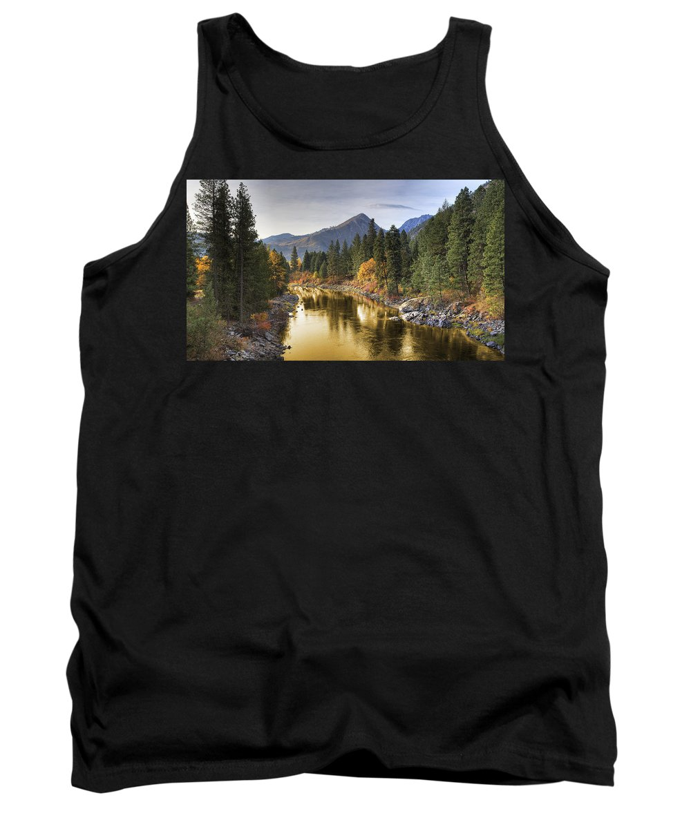 Gold Tank Top featuring the photograph River Of Gold by Robert Bartow