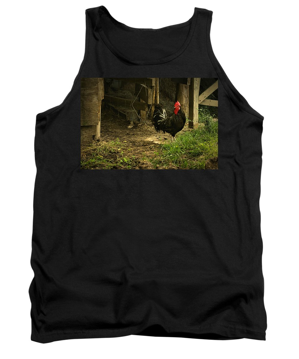 Rooster Tank Top featuring the digital art Rooster In The Hen House by Linda Unger
