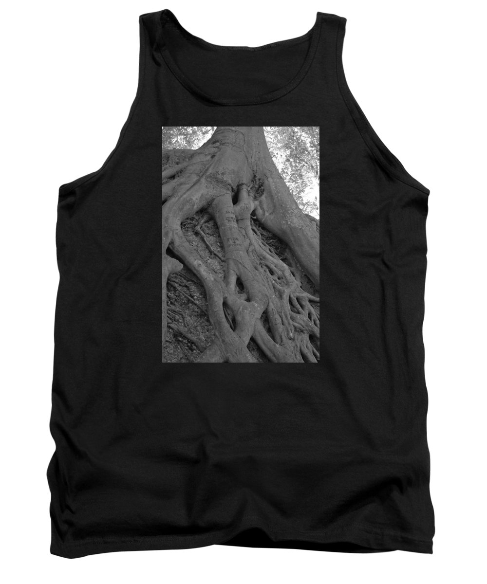 Tree Tank Top featuring the photograph Roots II by Suzanne Gaff