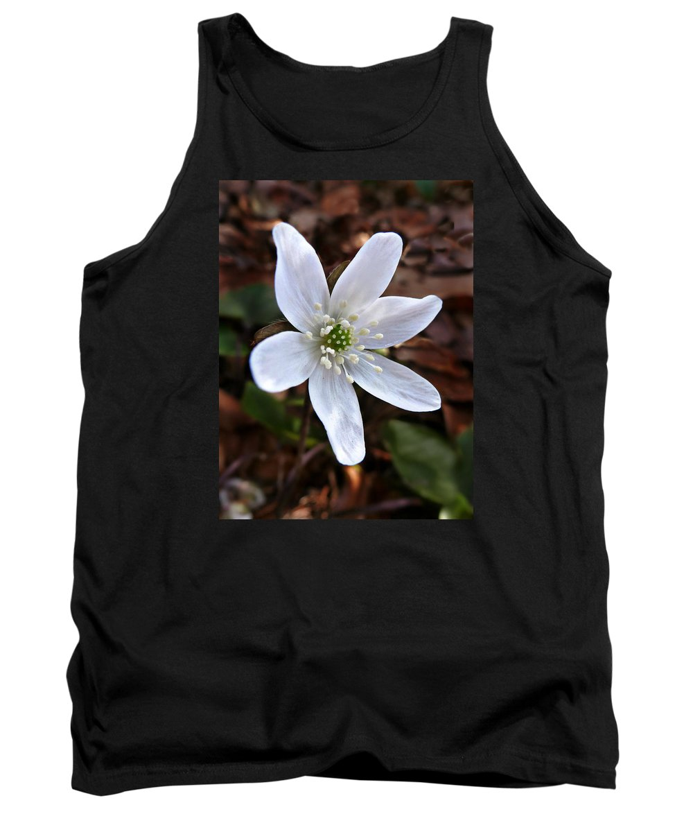 Hepatica Americana Tank Top featuring the photograph Wild Round-lobe Hepatica by William Tanneberger