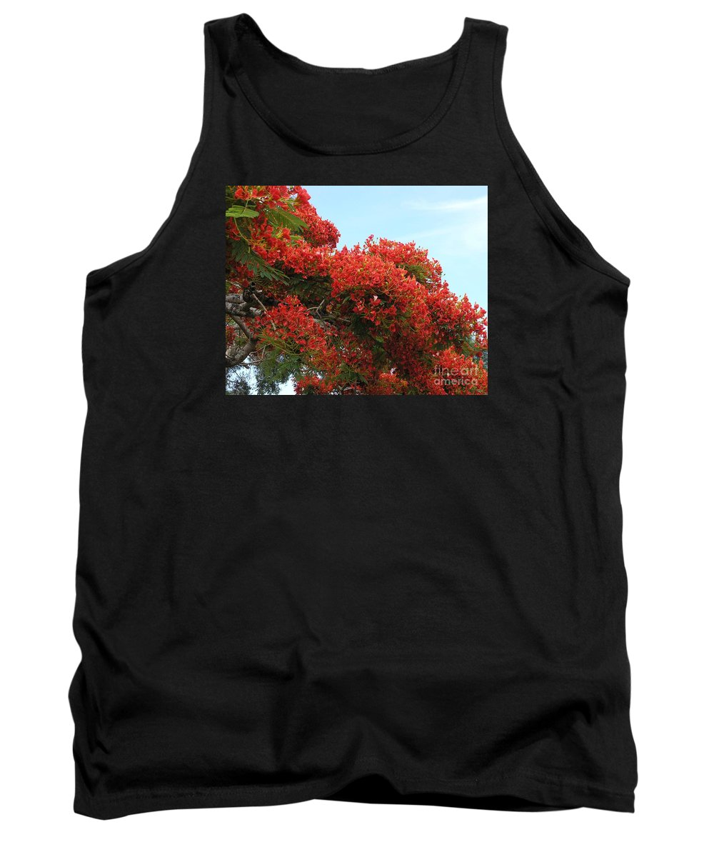 Trees Tank Top featuring the photograph Royal Poinciana Branch by Mary Deal