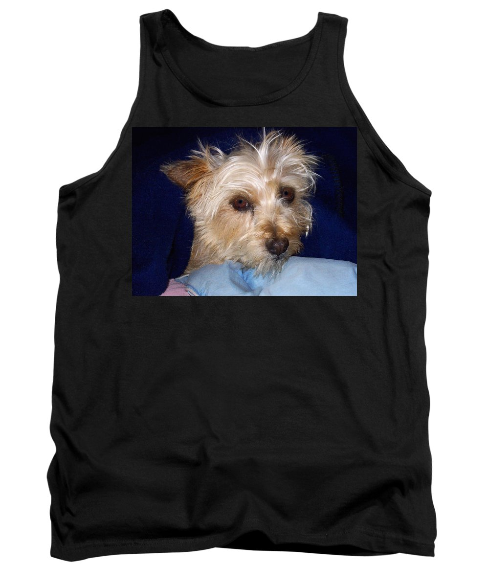 Pets Tank Top featuring the photograph Sasha by Gary Benson