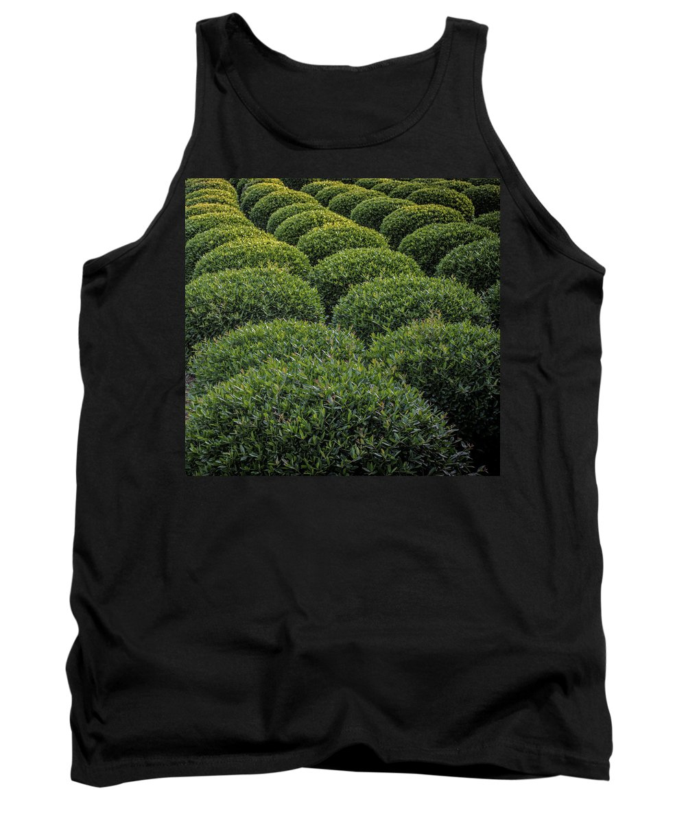 Shrubs Tank Top featuring the photograph Scrubs by Tracy Brock