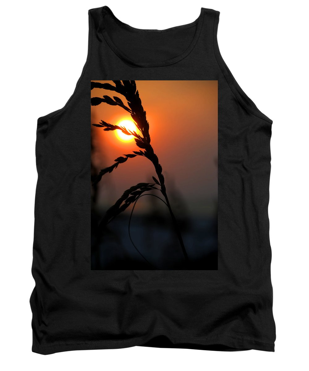 Palm Tank Top featuring the digital art Sea Grass In The Sun by Michael Thomas
