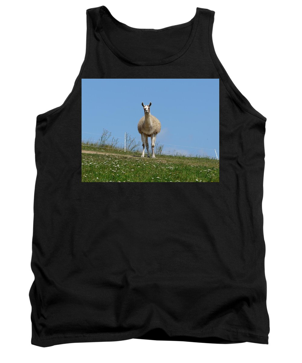 Lama Tank Top featuring the photograph Sentinel by Valerie Ornstein