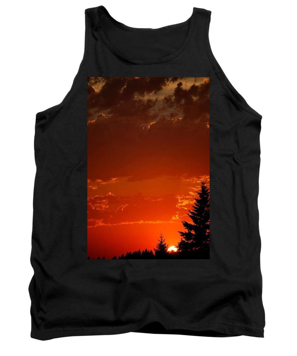Sun Tank Top featuring the photograph Setting Low IIII by Kathy Sampson