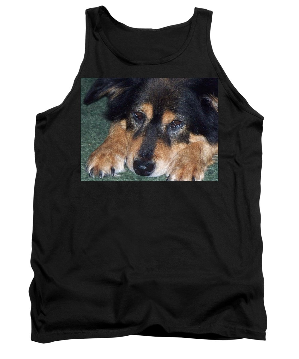 Dog Tank Top featuring the photograph Sleepy Kody by Lisa Wormell