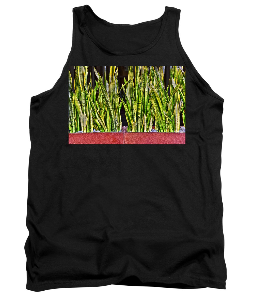 Photography Tank Top featuring the photograph Snakes In A Box by Paul Wear