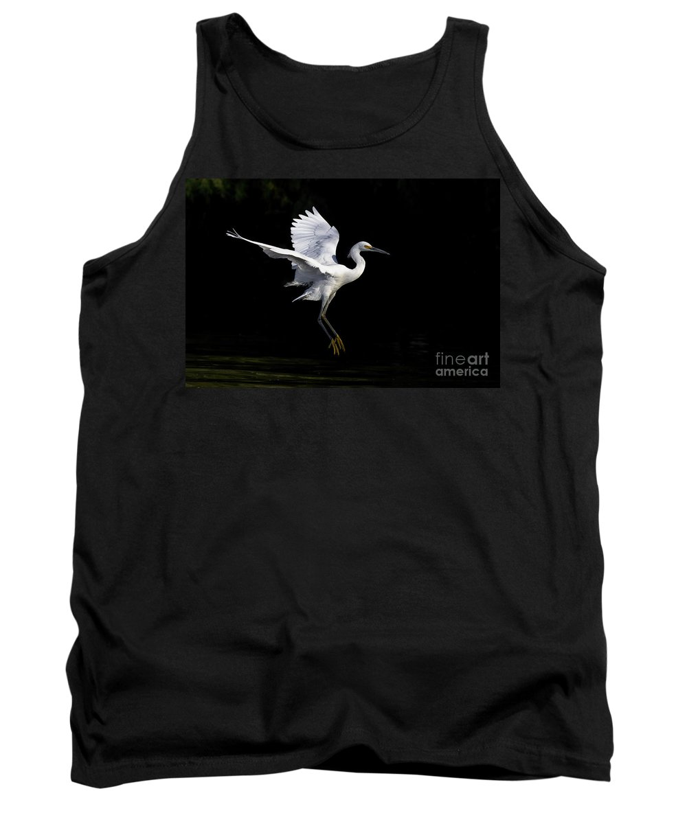Snowy Egret Tank Top featuring the photograph Snowy In Shadows by Bryan Keil