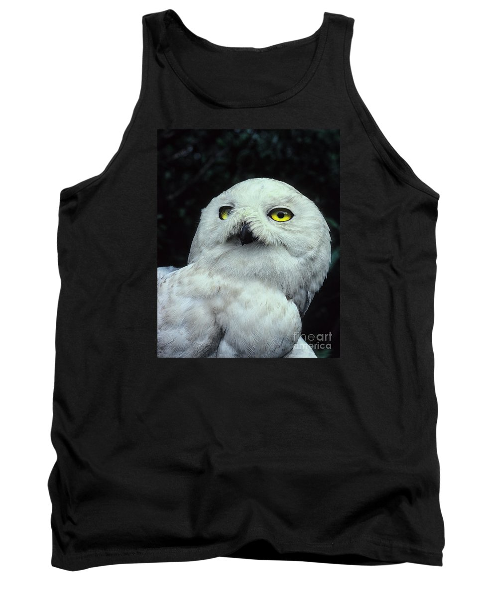 Snowy Owl Tank Top featuring the photograph Snowy Owl Portrait by Timothy Flanigan