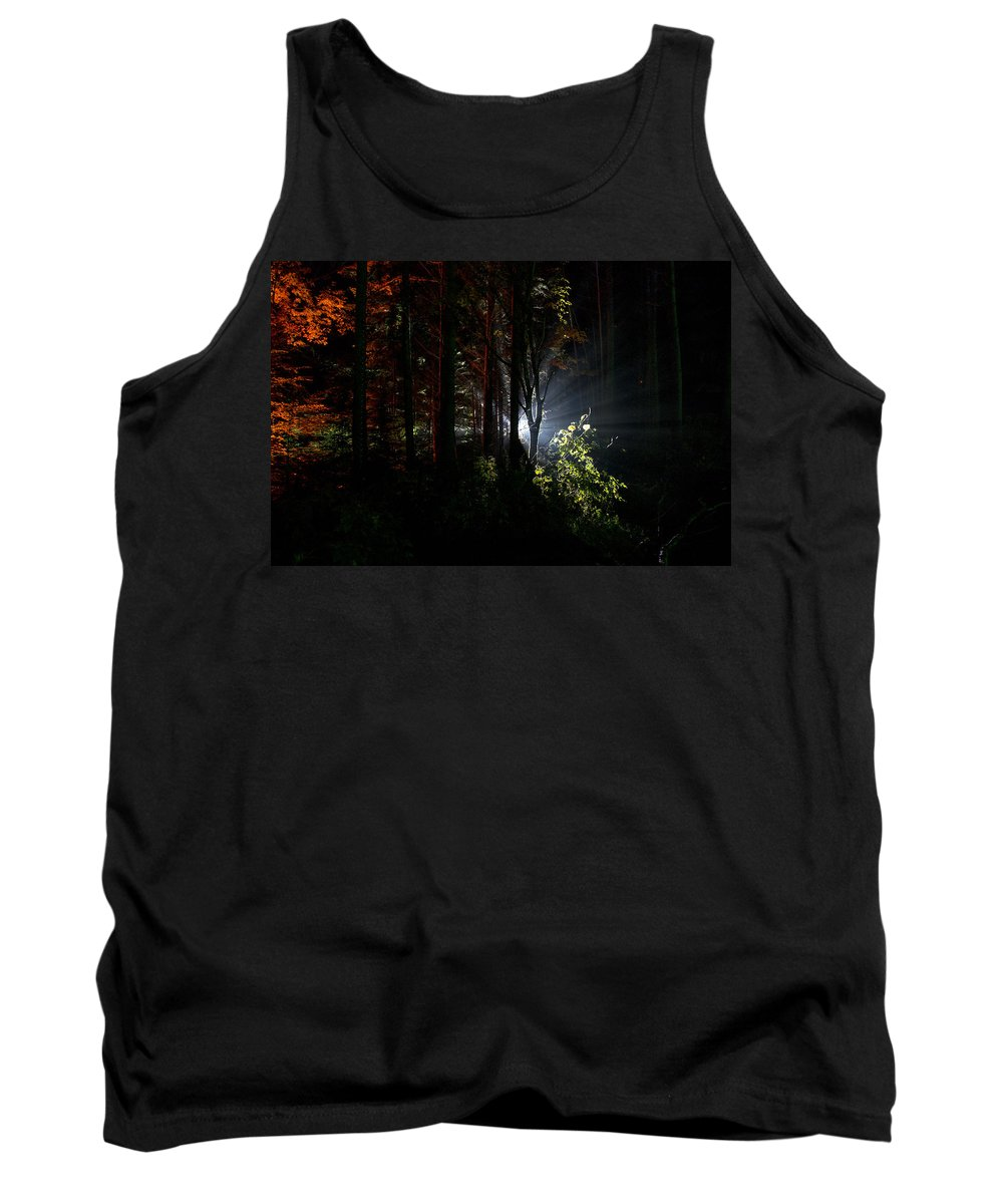 tay Forest Park Tank Top featuring the photograph Something Out There by Ross G Strachan