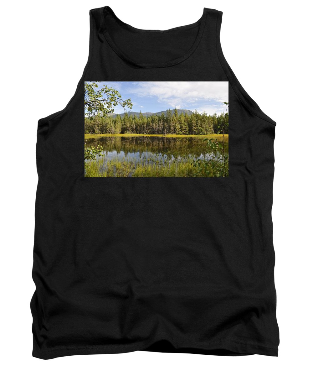 Summer Tank Top featuring the photograph Southeast Summer by Cathy Mahnke