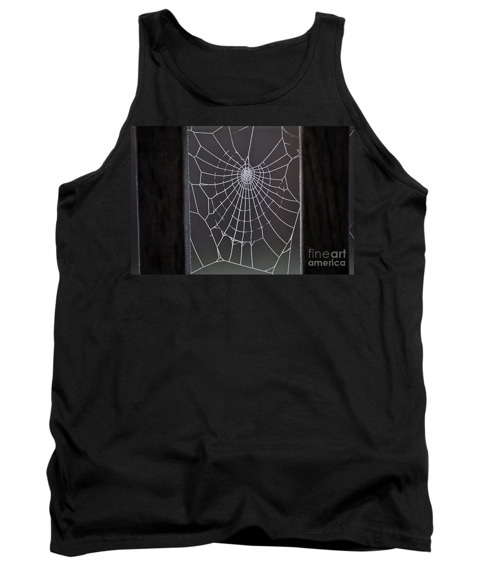 Aranae Tank Top featuring the photograph Spider Web With Frost by Jim Corwin