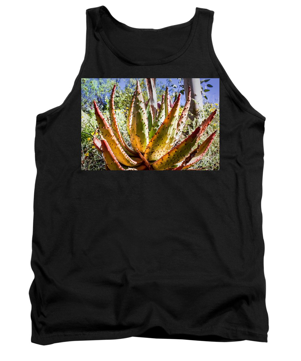 Aloe Tank Top featuring the digital art Spring Color In The Desert by Georgianne Giese