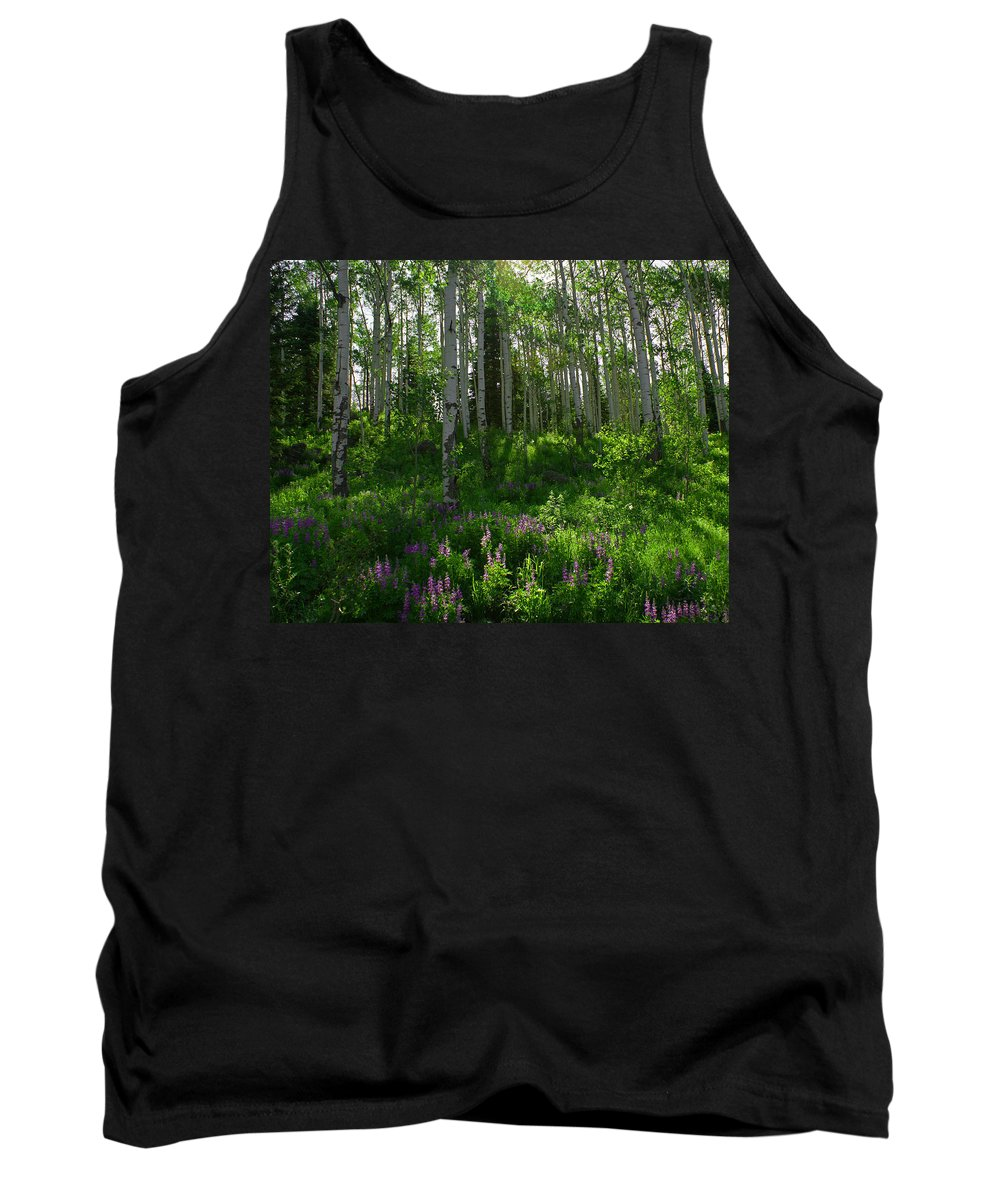 Aspens Tank Top featuring the photograph Springtime On The Grand Mesa by Ernie Echols