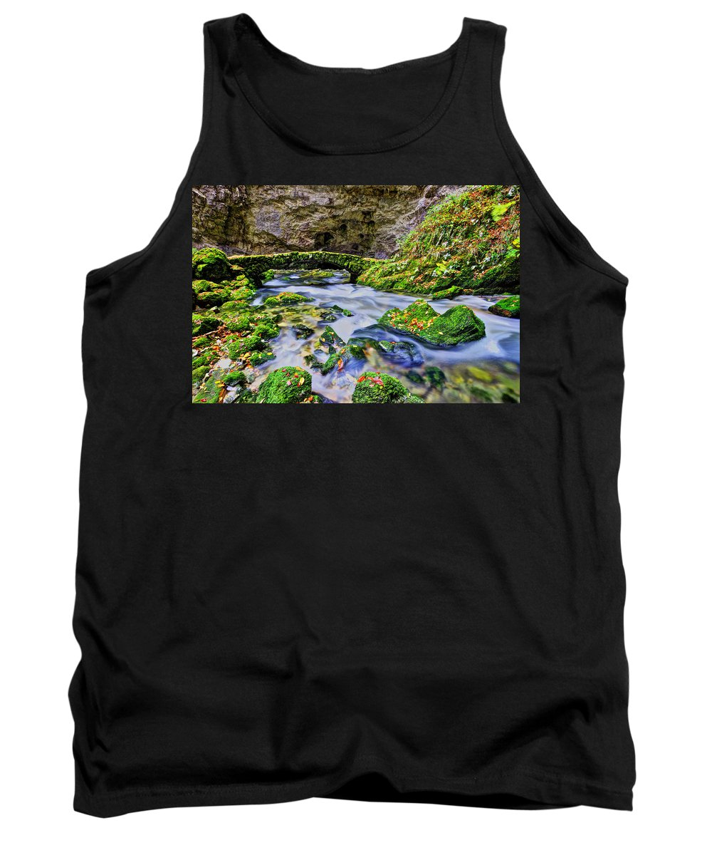 Scenic Tank Top featuring the photograph Stone Bridge by Ivan Slosar