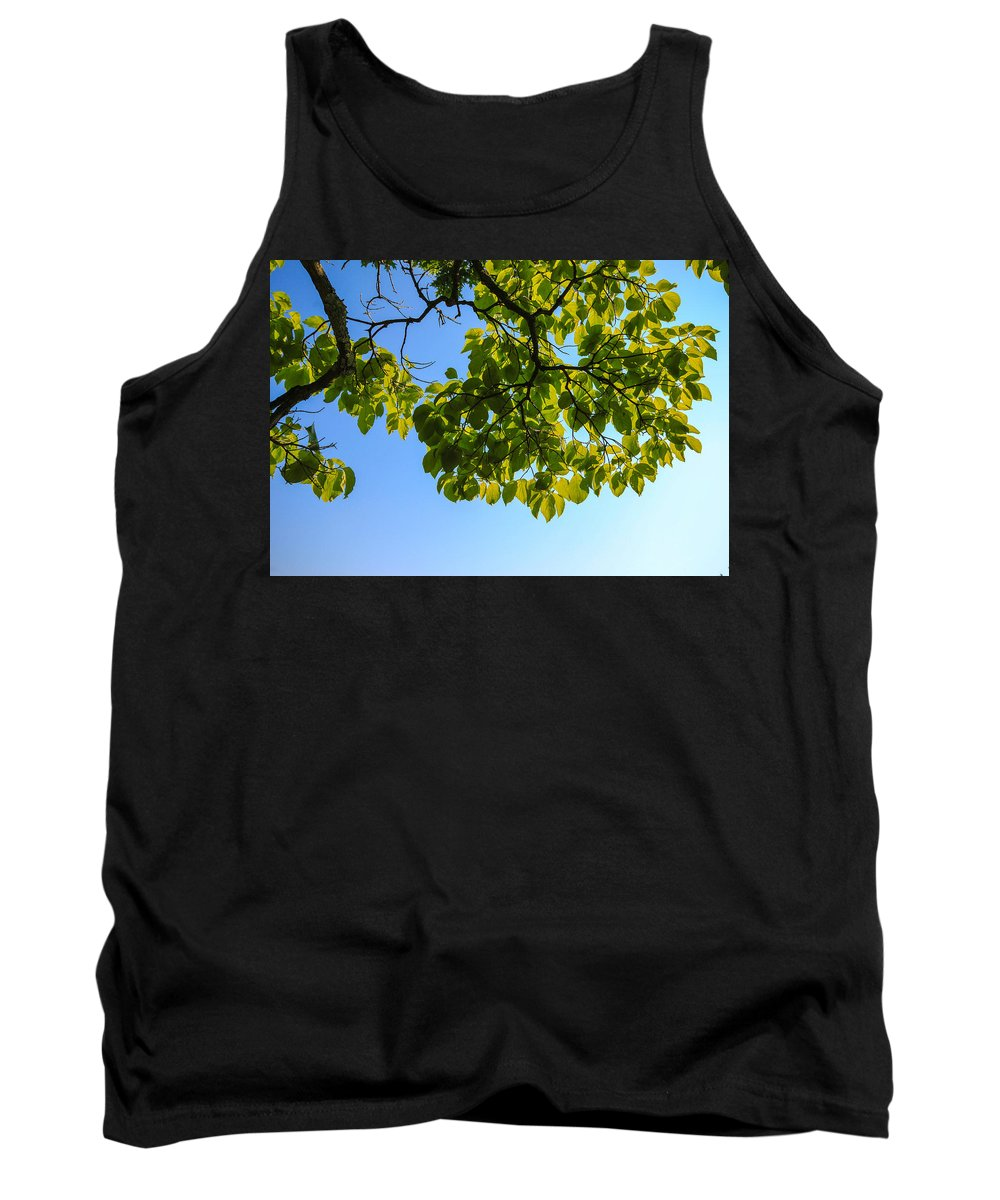 Leaves Tank Top featuring the photograph Summer Sky by Gaurav Singh