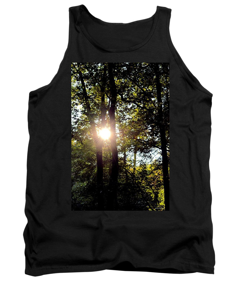 Sun Kissed Trees Tank Top featuring the photograph Sun Kissed Trees by Maria Urso