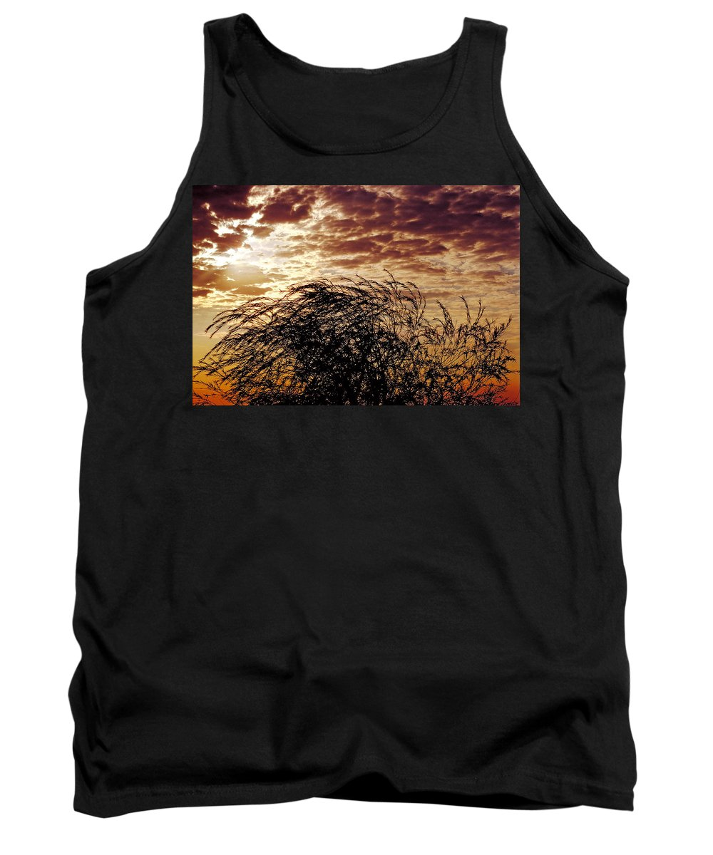 Nature Tank Top featuring the photograph Sunrise And Lacy Tree by Thomas Firak