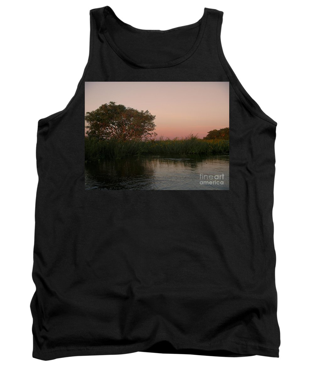 Brazil Tank Top featuring the digital art Sunset In Teh Pantenal by Carol Ailles