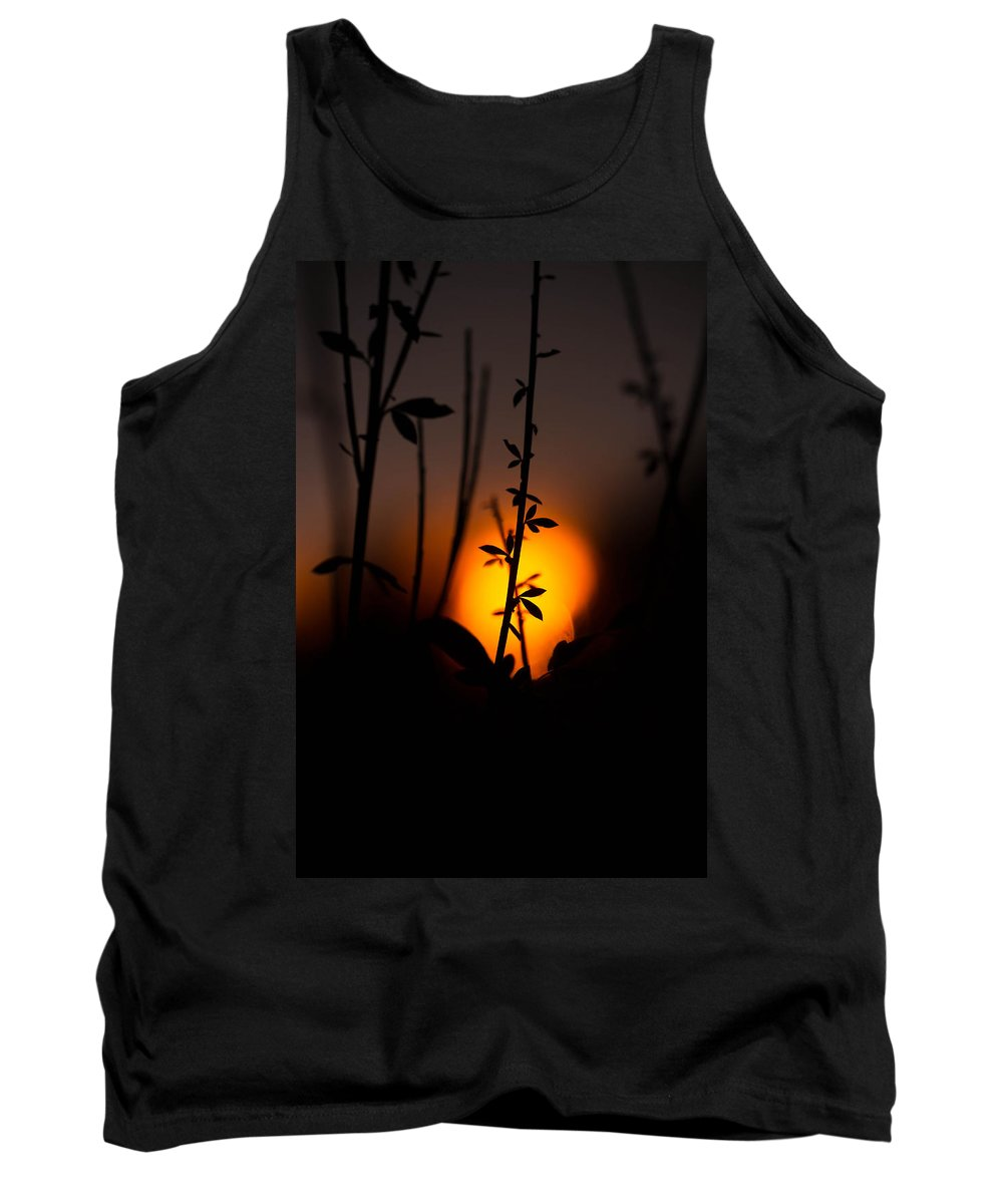Sunset Tank Top featuring the photograph Sunset Silhouette by Danielle Silveira