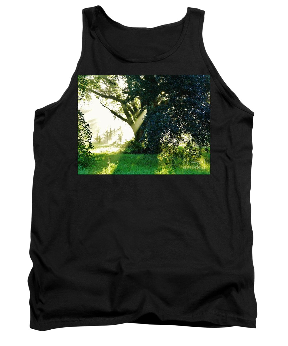 Sunshine Tank Top featuring the photograph Sunshine And Sunbeams by D Hackett