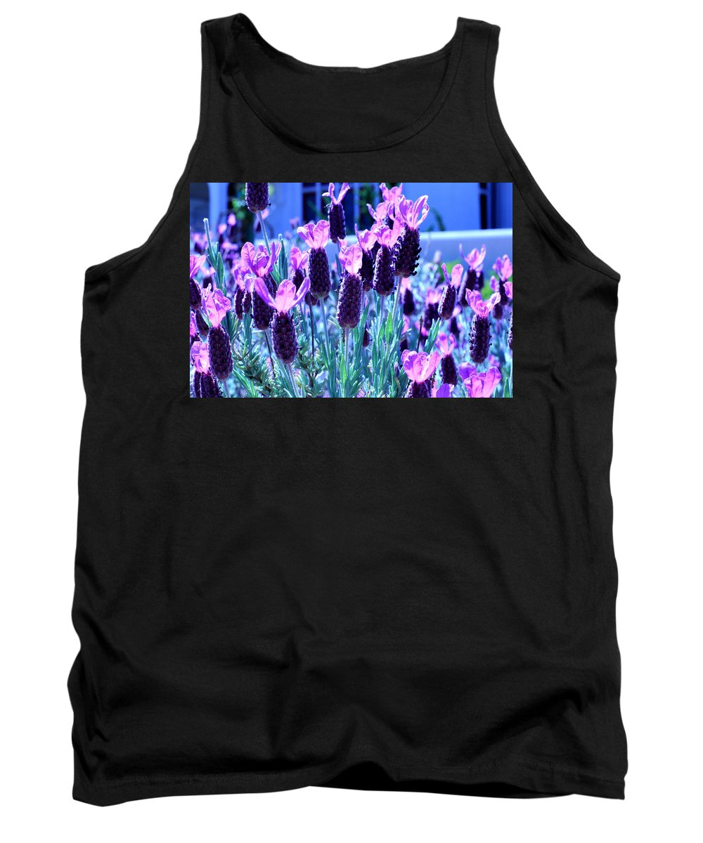 Sweet Lavender Tank Top featuring the photograph Sweet Lavender by Scott Hill