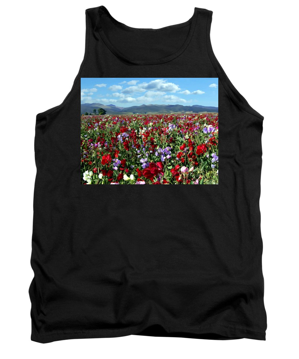 Flowers Tank Top featuring the photograph Sweet Peas Forever by Kurt Van Wagner