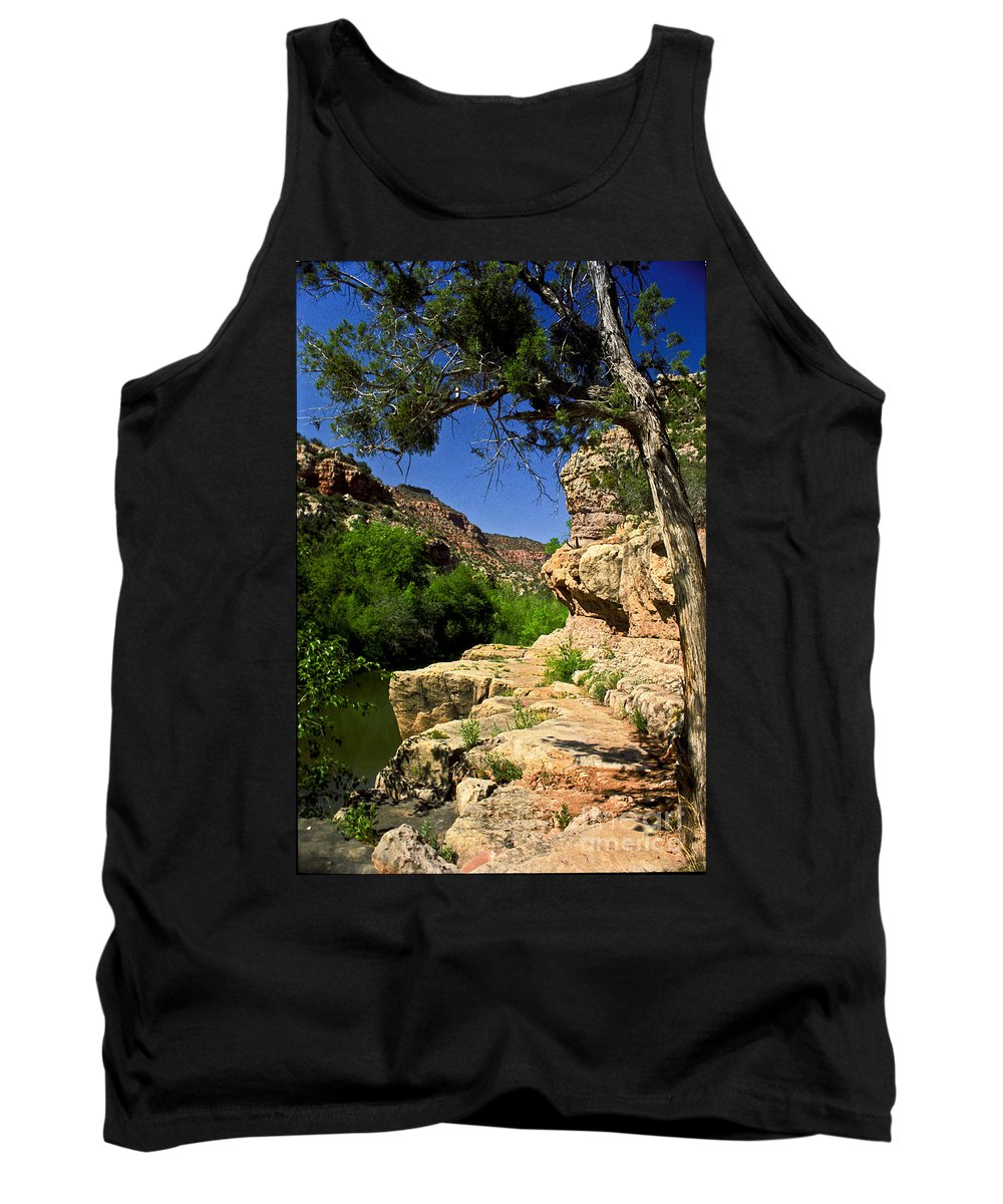 Arizona Tank Top featuring the photograph Sycamore Canyon by Kathy McClure