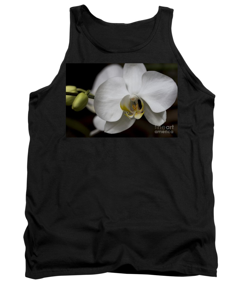 Symphony White Tank Top featuring the photograph Symphony White Orchid by Meg Rousher