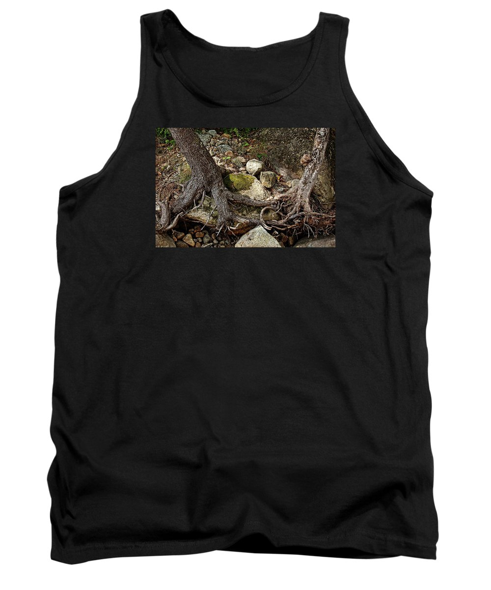 Nature Tank Top featuring the photograph Tangled by Marvin Borst