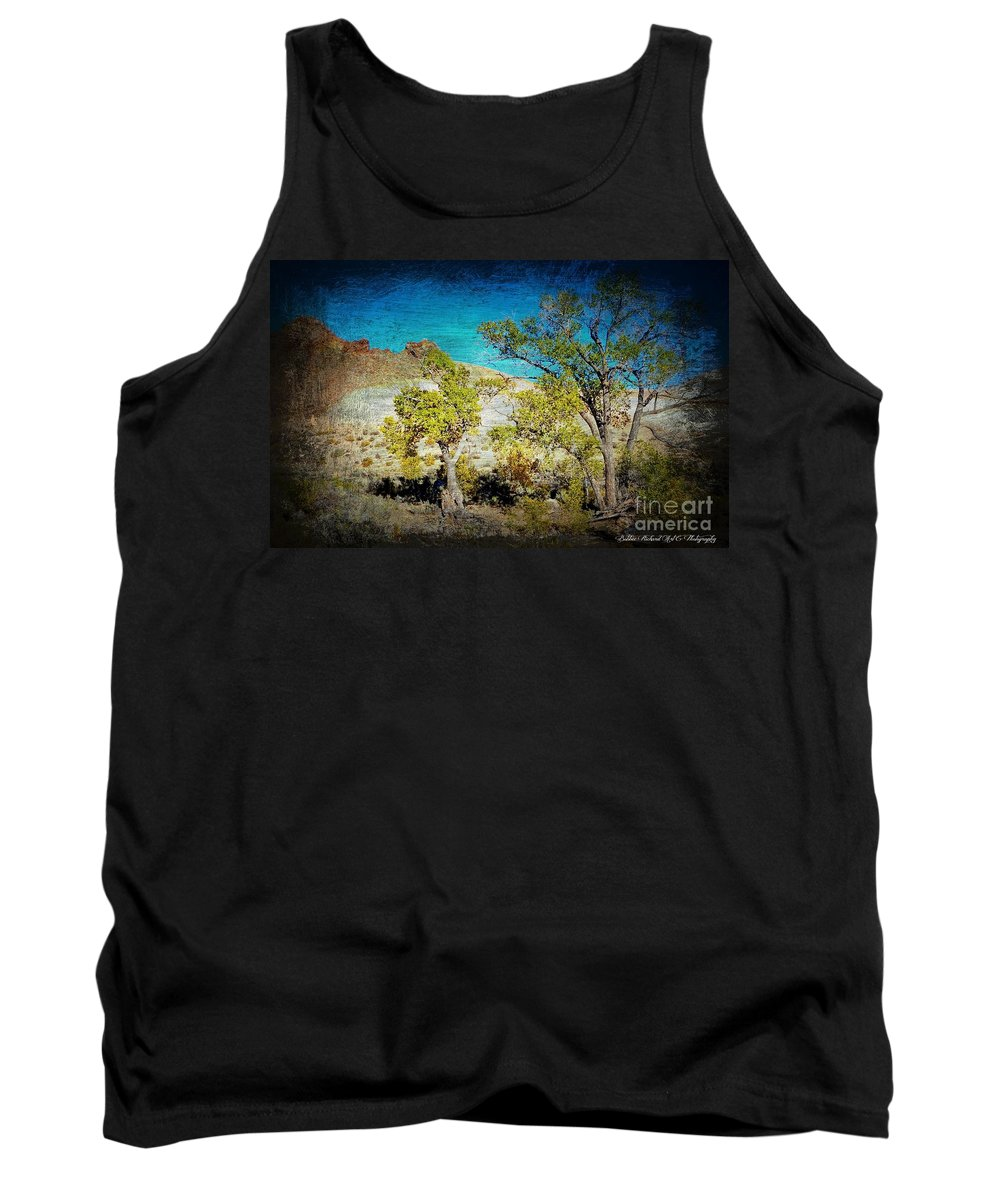 Desert Tank Top featuring the photograph The Desert by Bobbee Rickard