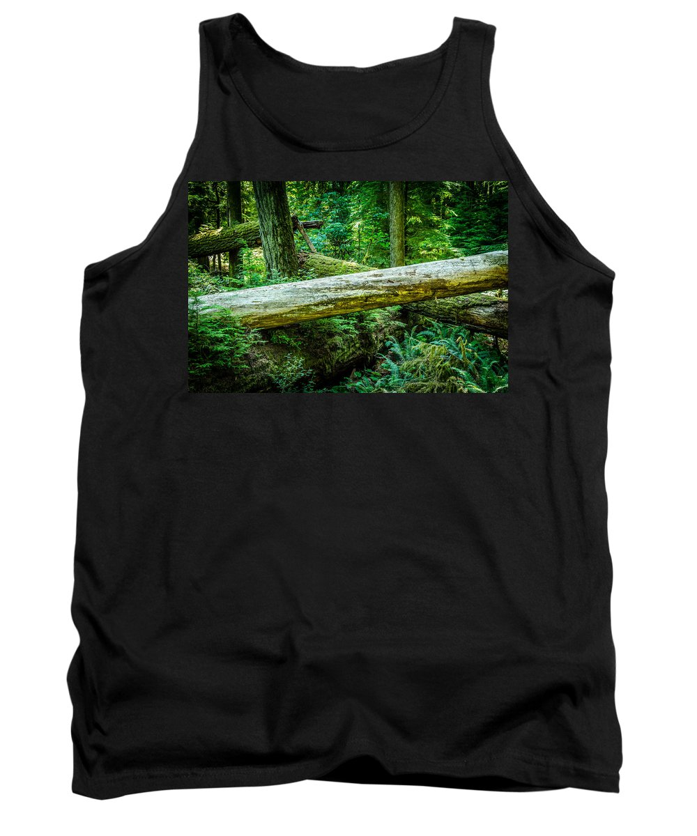 Old Growth Forest Tank Top featuring the photograph The Fallen Collection 12 by Roxy Hurtubise