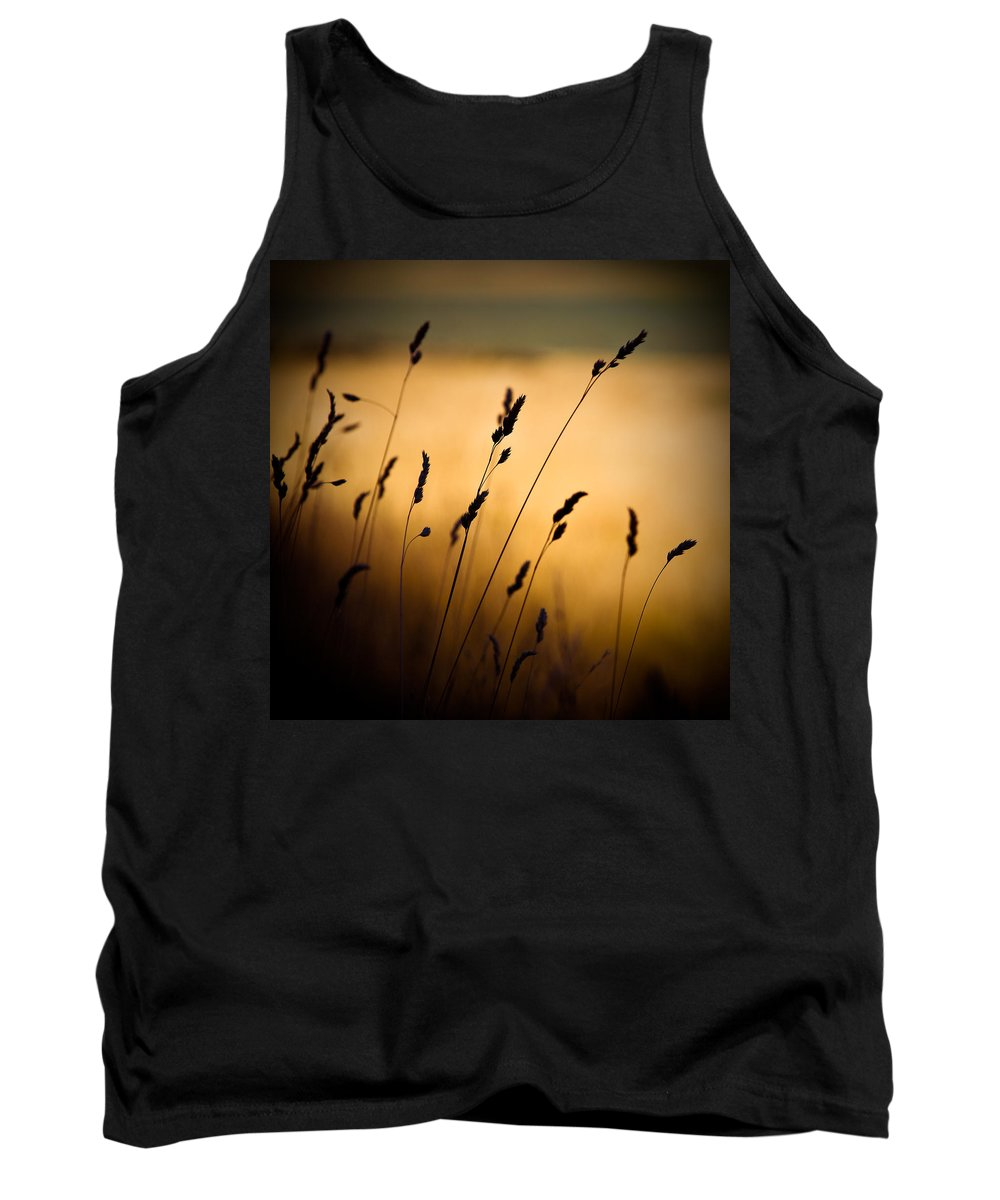 Filed At Sunset Tank Top featuring the photograph The Field by Dave Bowman