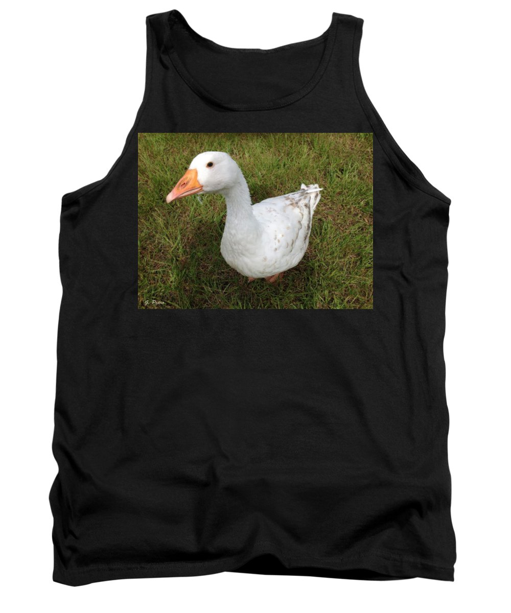 Goose Tank Top featuring the painting The Inquisitive Goose by George Pedro