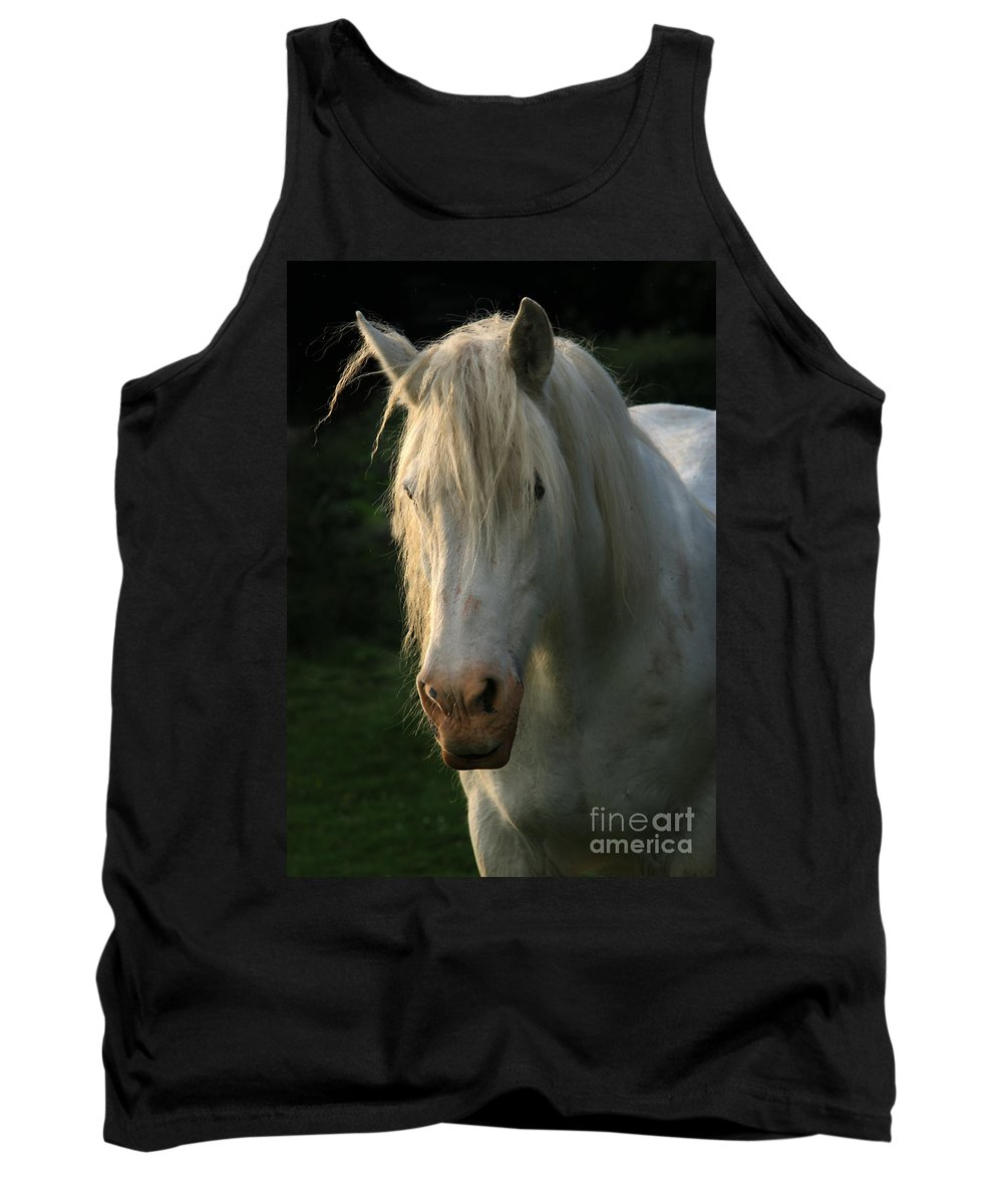 Unicorn Tank Top featuring the photograph The Light In The Mane by Angel Ciesniarska