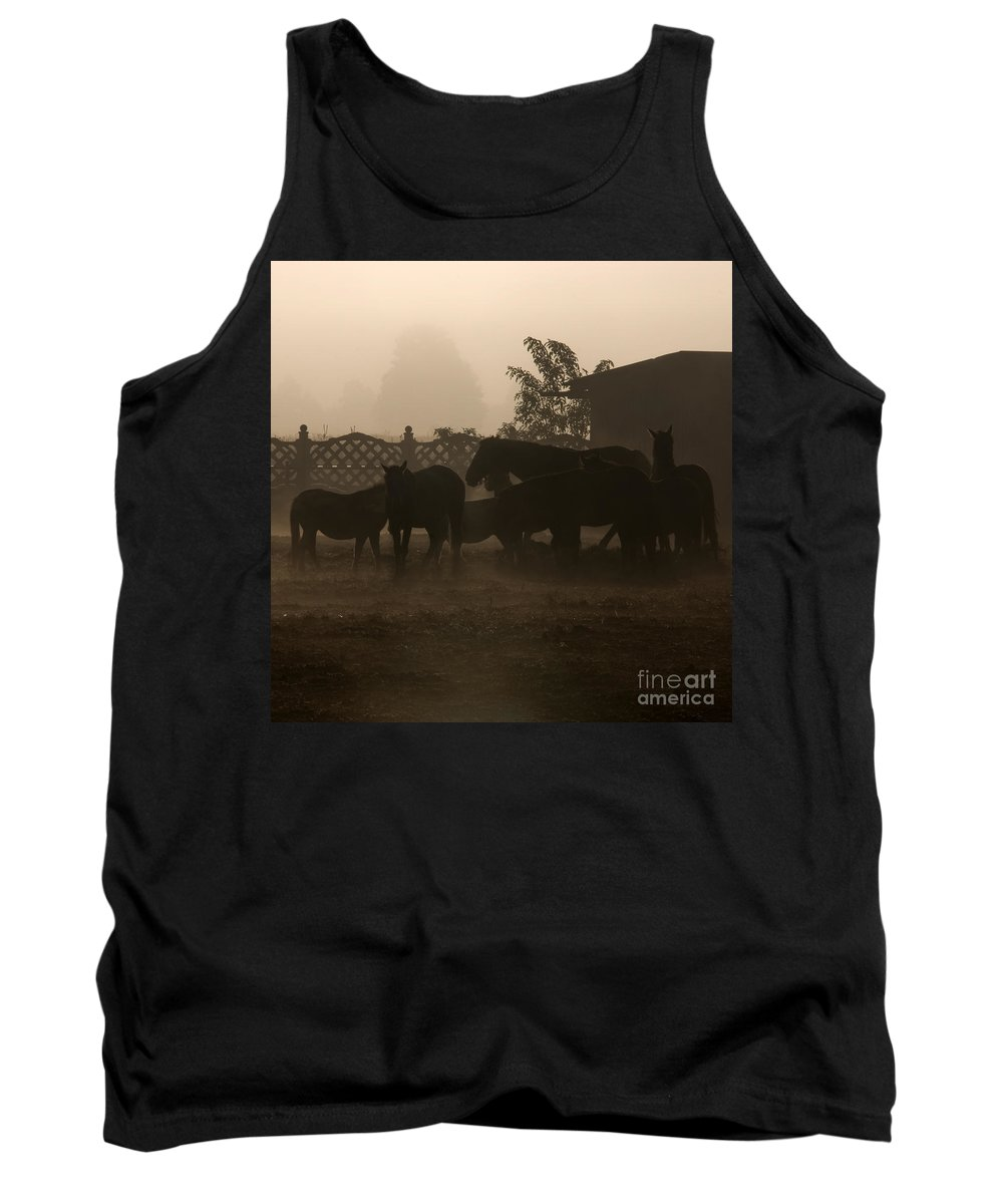 Misty Morning Tank Top featuring the photograph The Misty Morning by Angel Ciesniarska