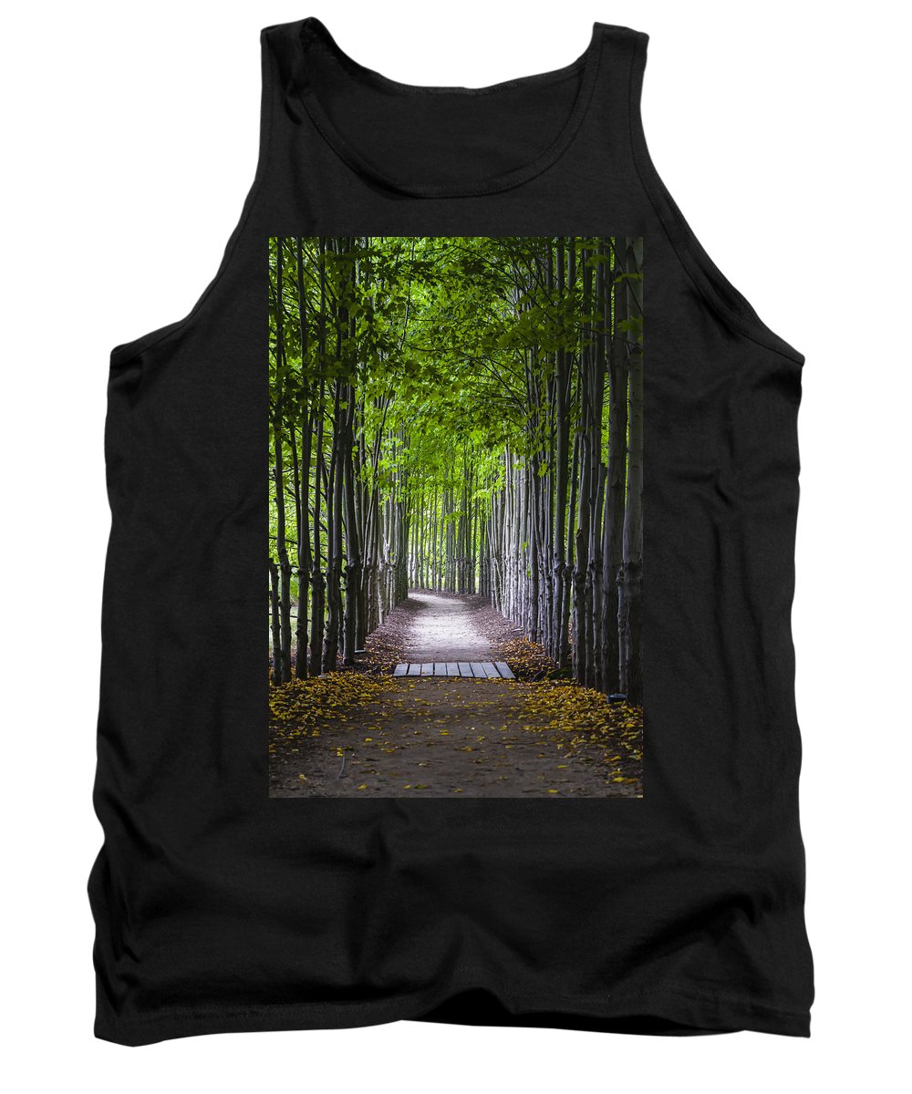Hamilton Tank Top featuring the photograph The Red Maple Allee by Eduard Moldoveanu