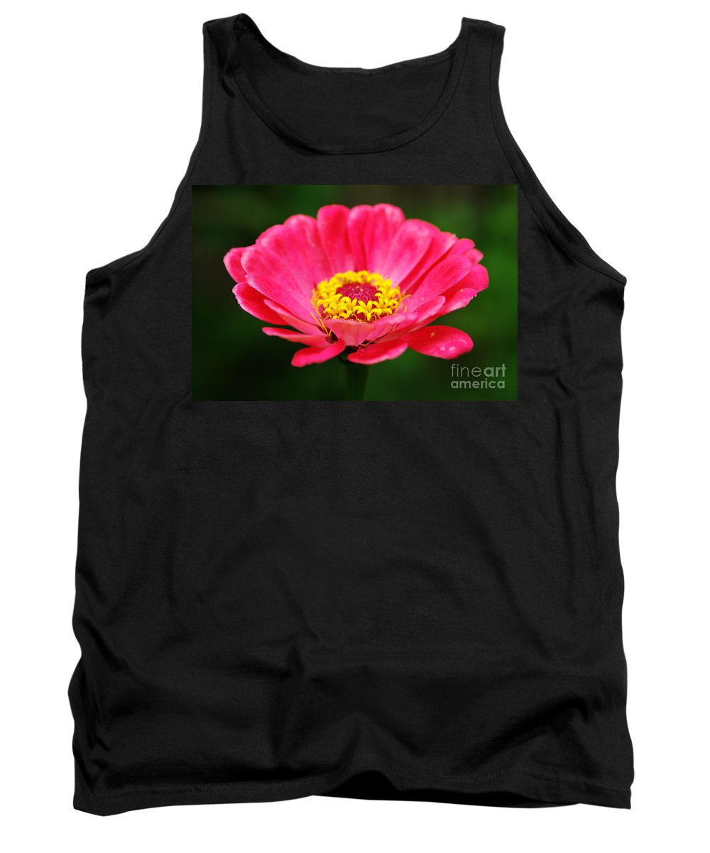 Pink Zinnia Tank Top featuring the photograph Think Pink by Kitrina Arbuckle