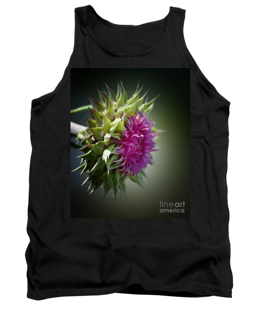 Thistle 14-3 Tank Top featuring the photograph Thistle 14-3 by Maria Urso