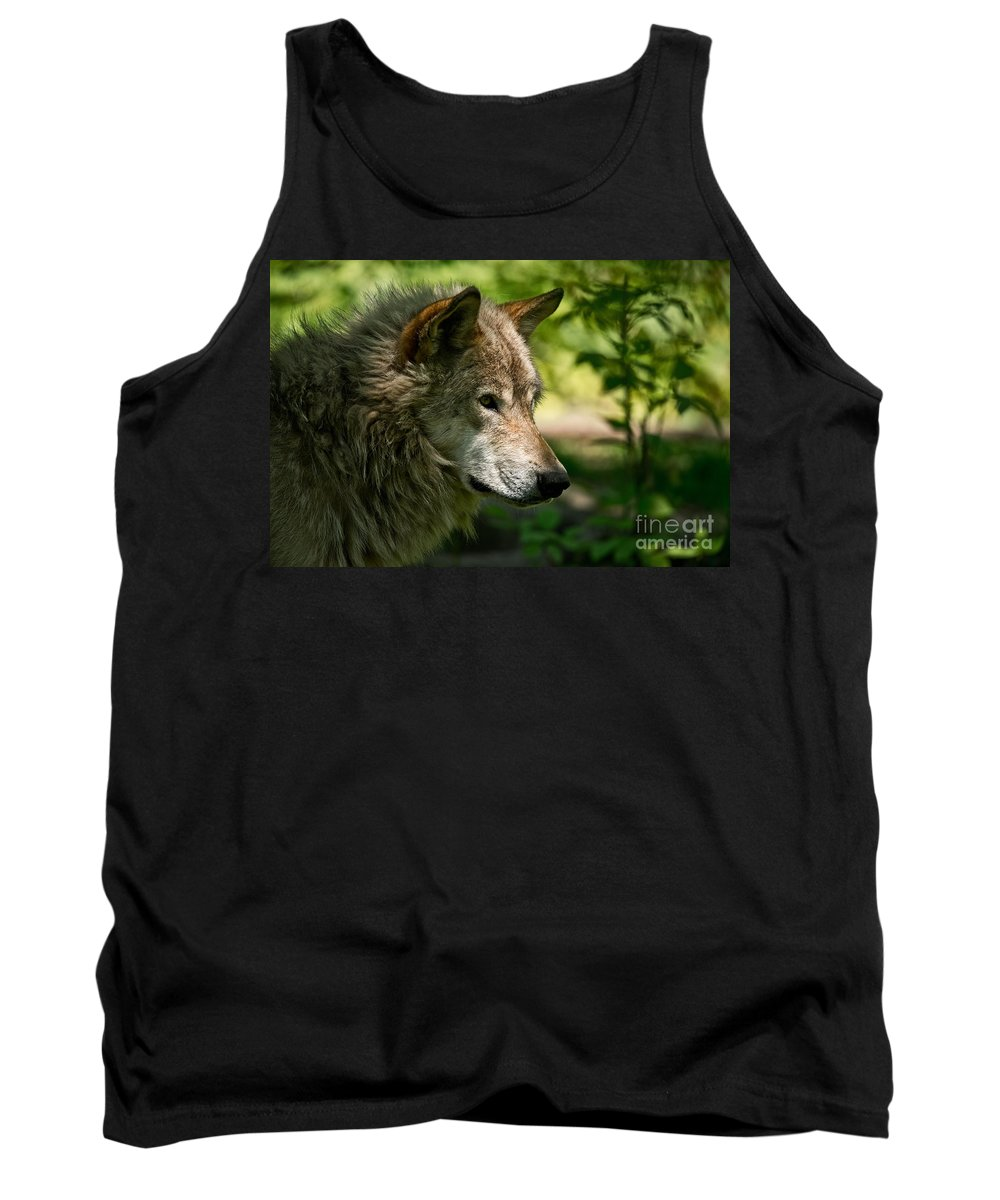 Timber Wolf Tank Top featuring the photograph Timber Wolf Pictures 263 by Wolves Only