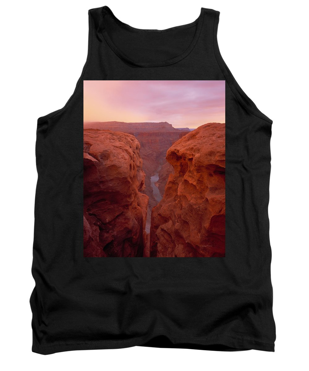 Grand Canyon Tank Top featuring the photograph Toroweap Overlook by Leland D Howard