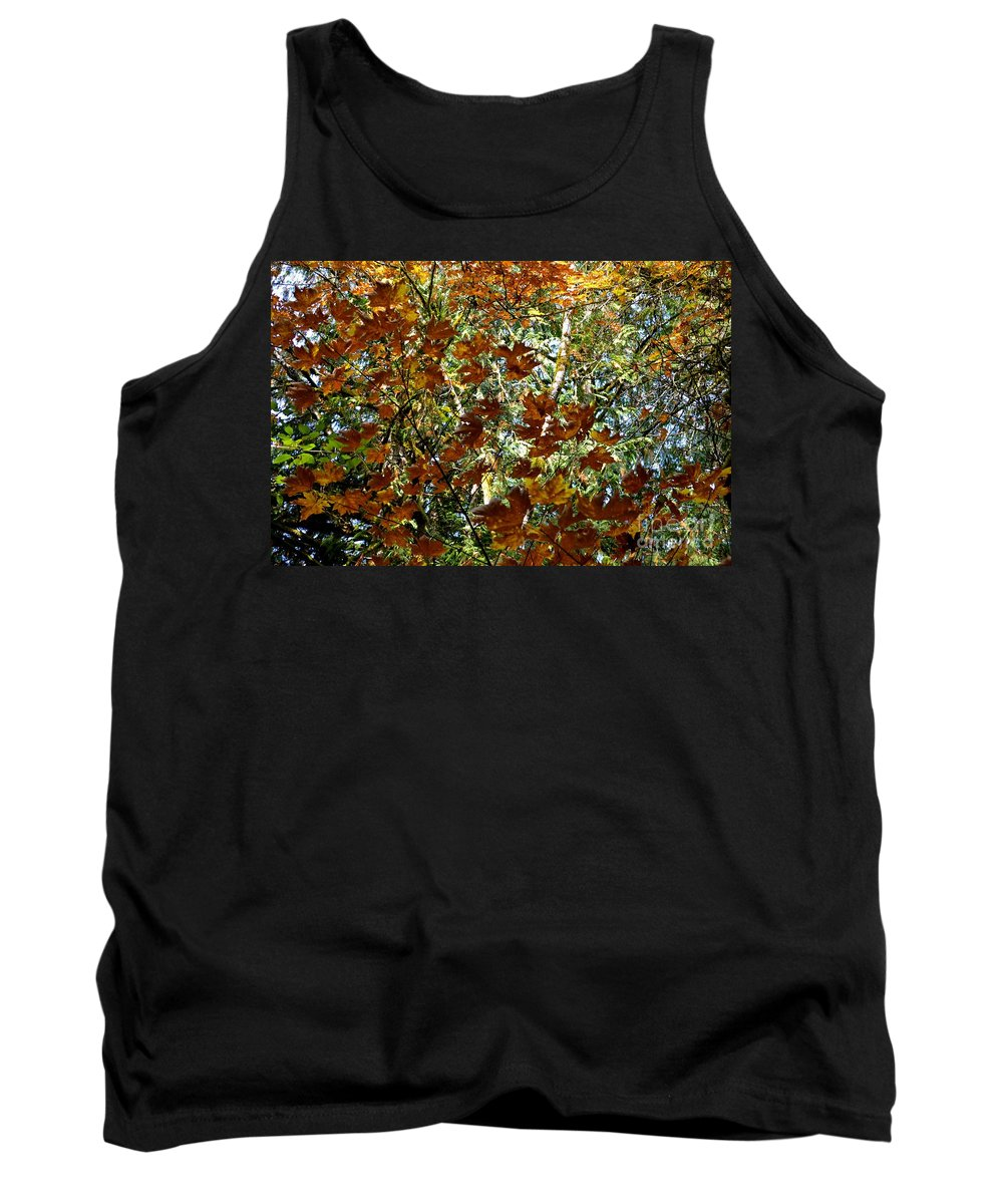 Nature Tank Top featuring the photograph Transition 2 by Stephanie Bland