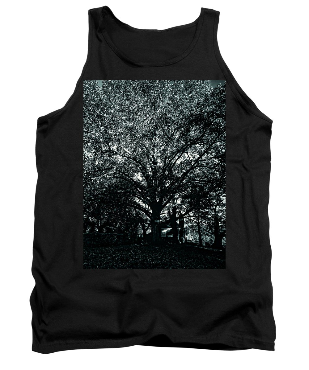 Tree Tank Top featuring the photograph Tree Black And White by Cathy Anderson