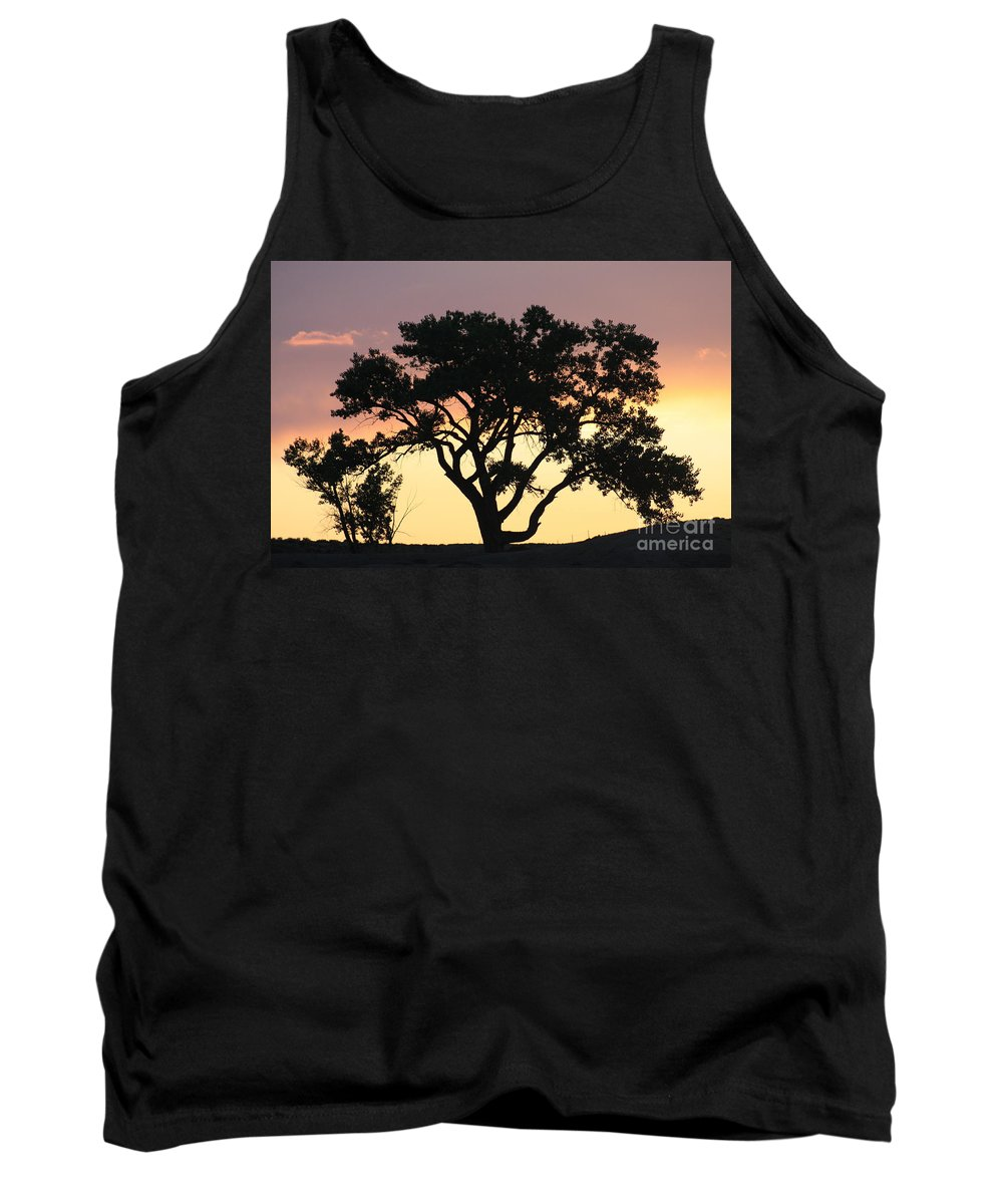 Tree Tank Top featuring the photograph Tree Of Life by Brandi Maher