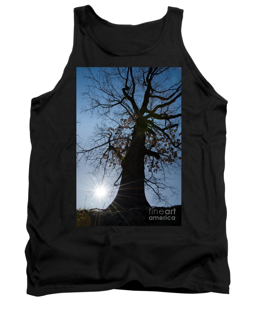 Tree Tank Top featuring the photograph Tree With Sun by Mats Silvan