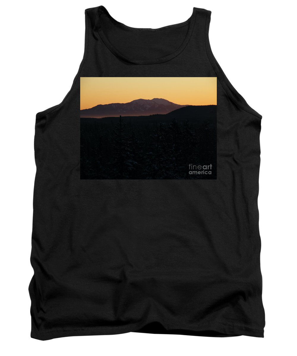 Tree Tank Top featuring the photograph Treeline by Brian Boyle